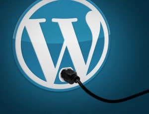 6 Essential WordPress Plugins for Niche Sites