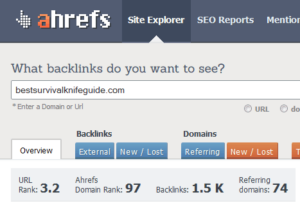 Is My Niche Site a Victim of Negative SEO?