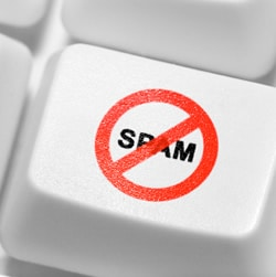 Beyond Metrics: How to Review Expired Domains for Spam
