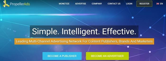9 Google Adsense Alternatives to Diversify Your Portfolio - Niche