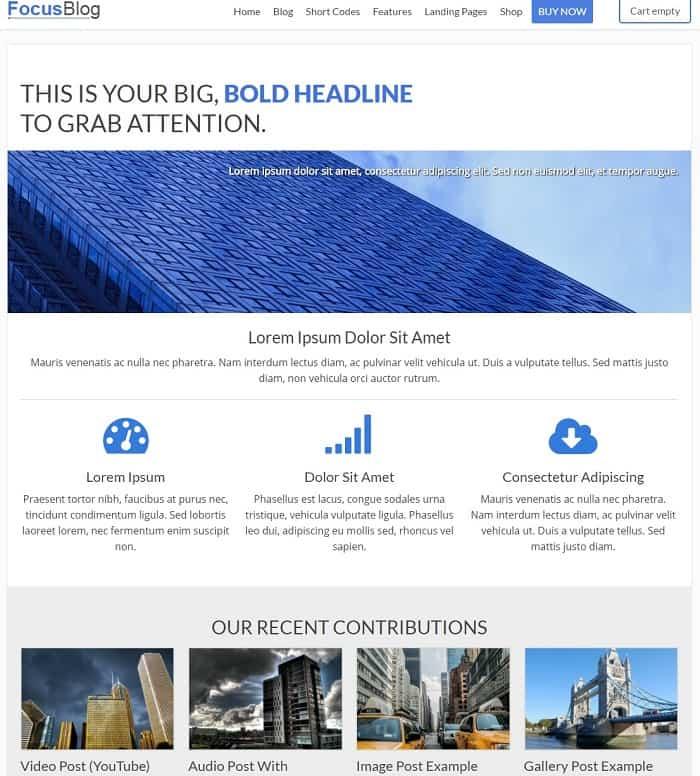 Focus Blog Demo Example