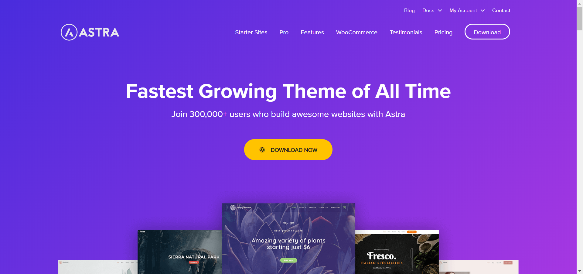 Best WordPress Themes for Affiliate Marketers (With Examples)