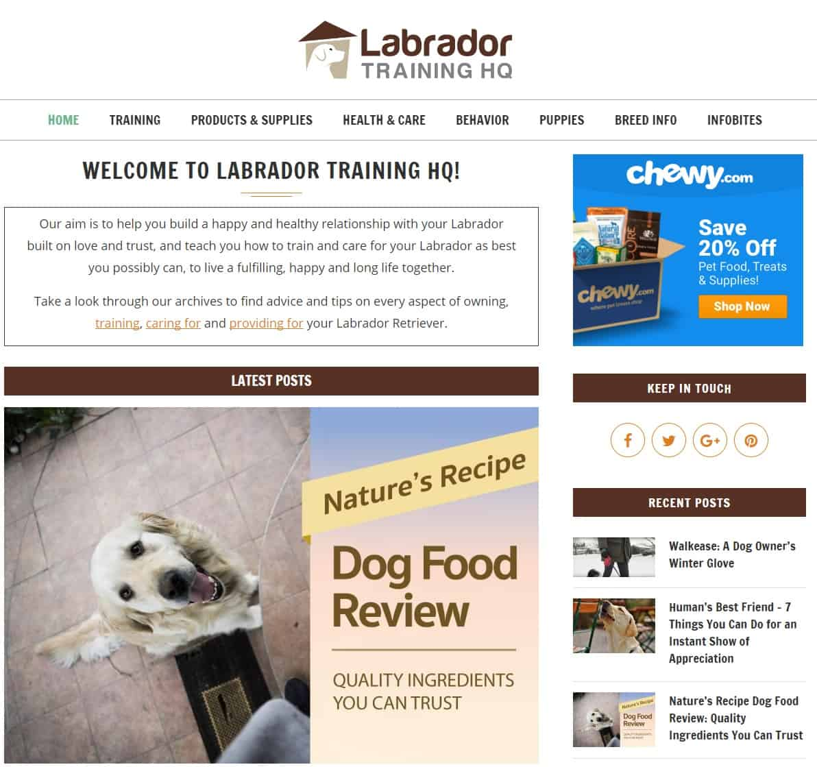 26 Examples of Successful Niche Websites That Are Working Right Now