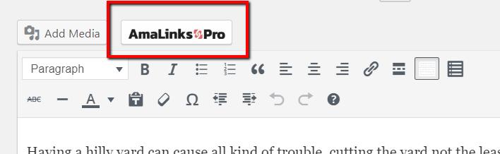 amalinks pro editor