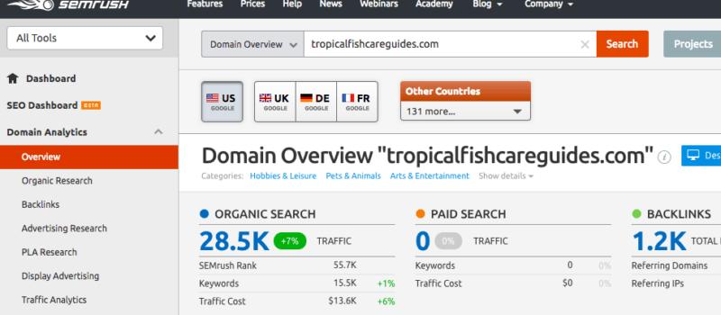 Domain Overview in SEMRush