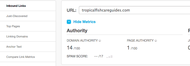 Domain Authority Metric