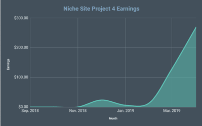 654fc9a8b9e5d How Much Does it Cost to Start a Blog or Niche Website  The Total  Investment Spent on Niche Site Project 4