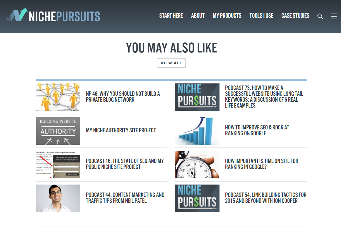 niche pursuits related posts below page
