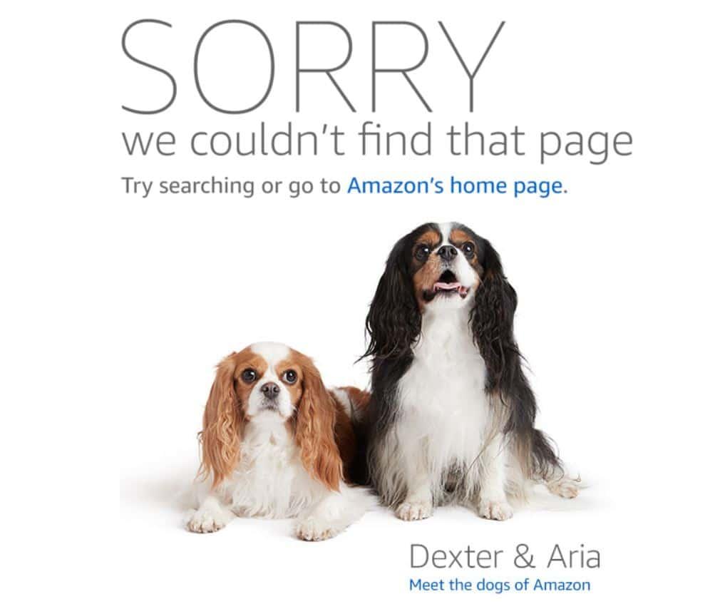 site buddy amazon affiliate link checker