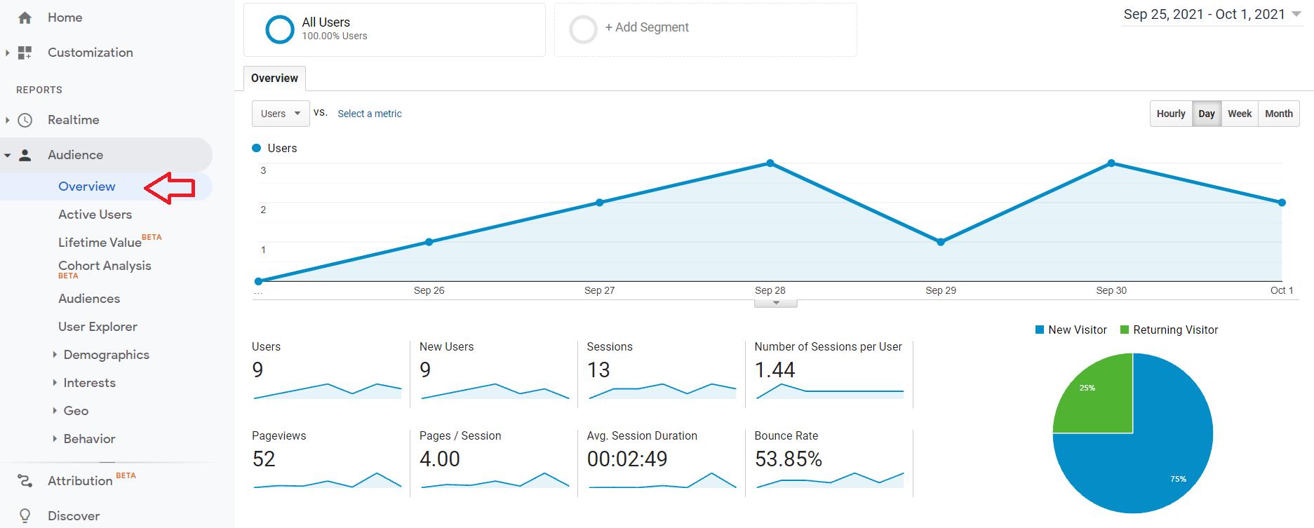 Capture d'écran Google Analytics de la section de présentation de l'audience.