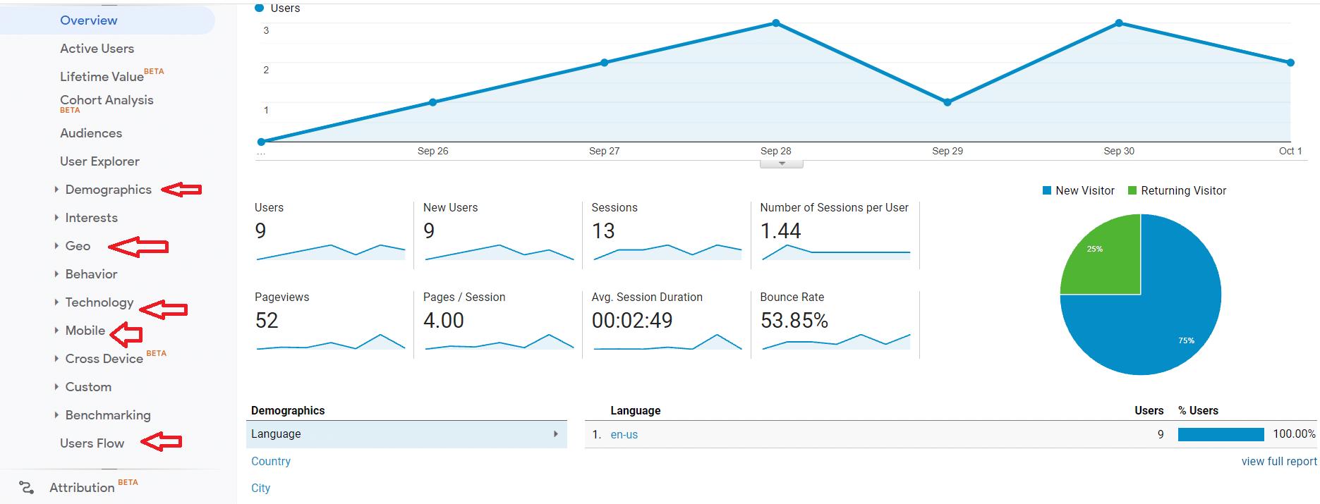 Section de suivi des données démographiques de Google Analytics.